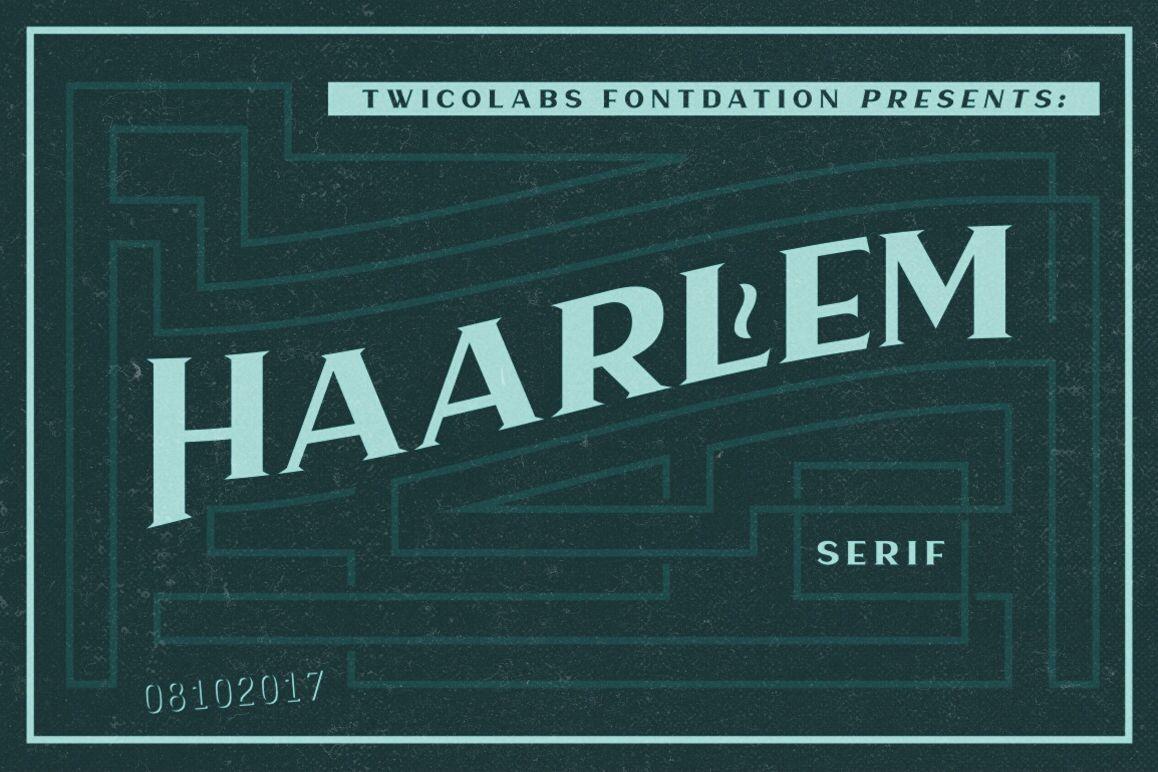 Haarlem Serif example image 1