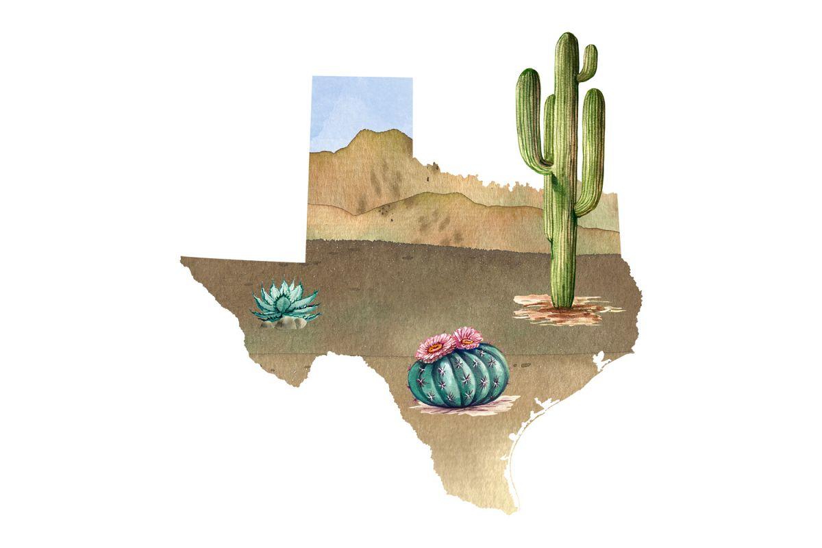 Texas Watercolor Image example image 1