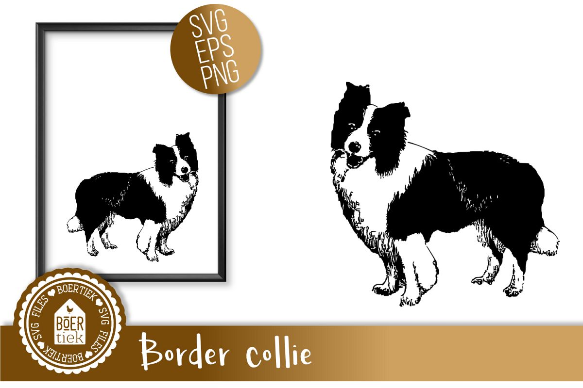 Border collie, SVG cutting file example image 1