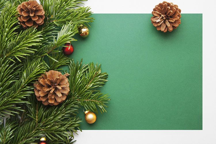 Christmas and New Year background with cones example image 1