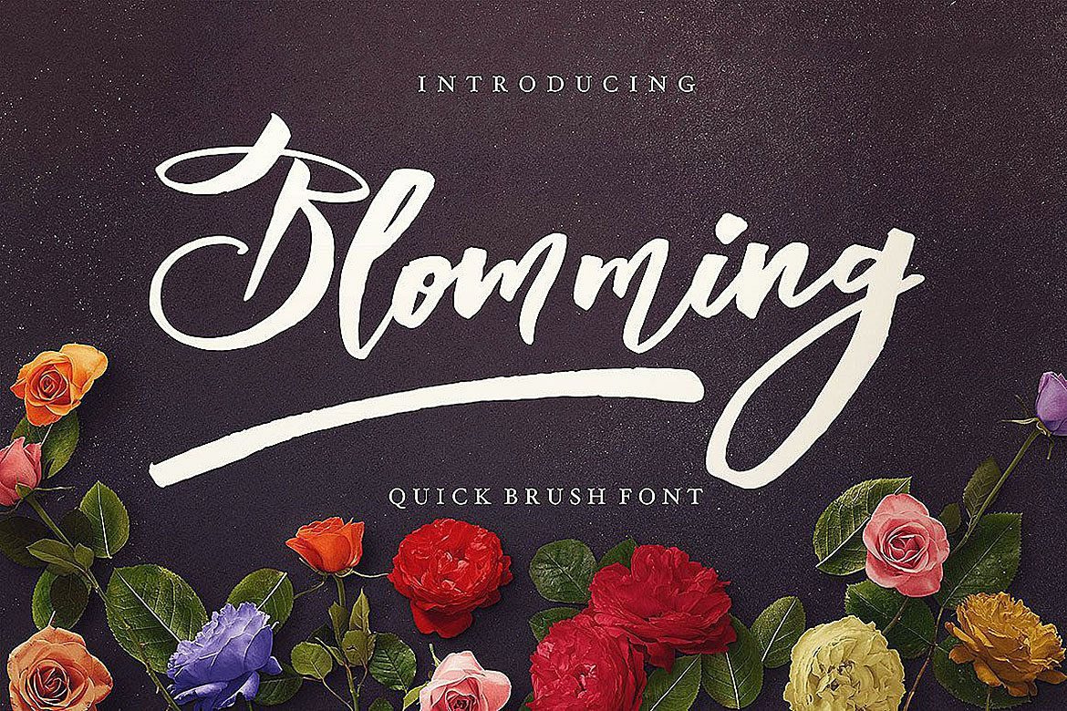 Blomming - Brush Font example image 1