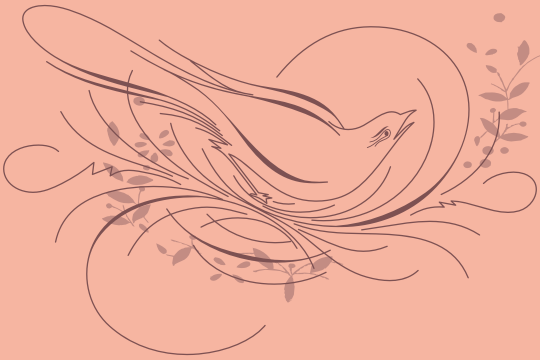 Calligraphic Birds Family Pack example image 1