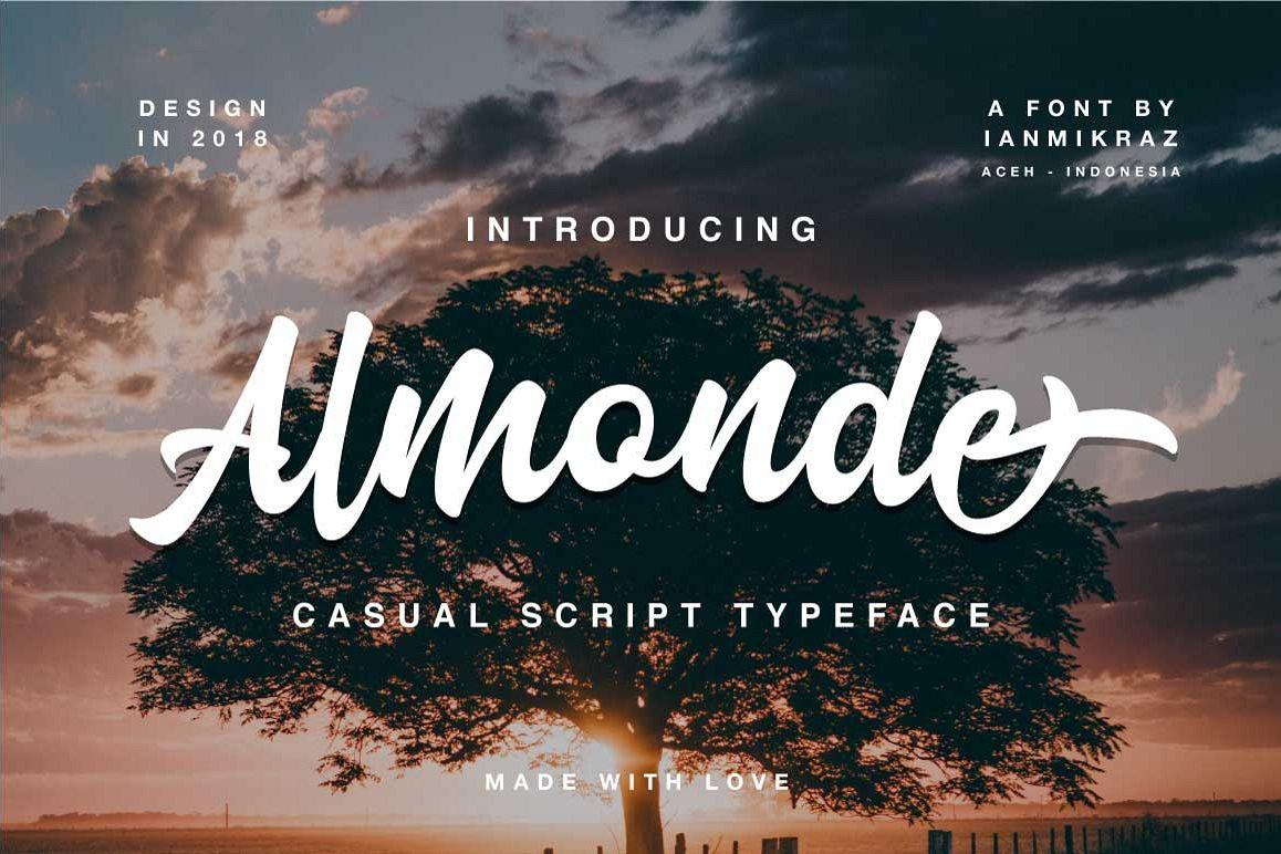 Almonde Script example image 1