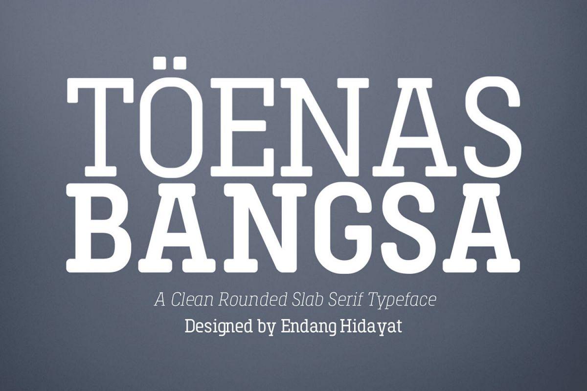 Toenas Bangsa Slab example image 1
