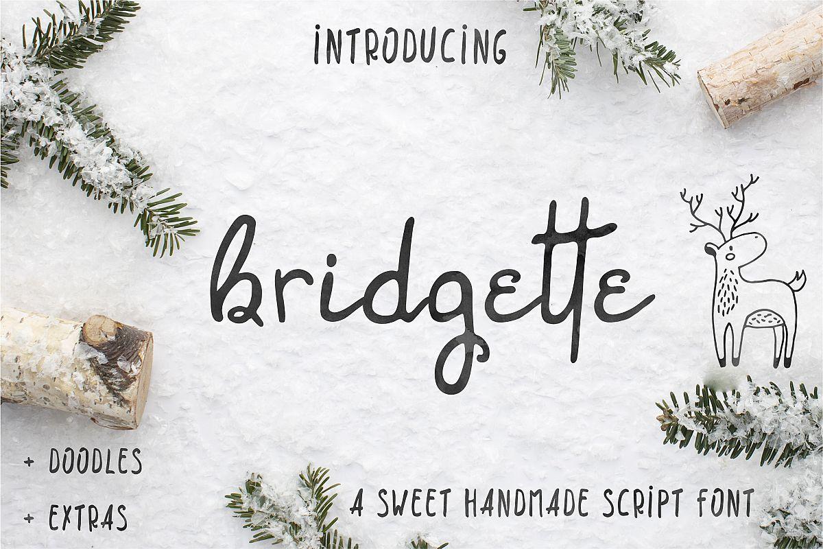 Bridgette script font & Woodland doodles example image 1