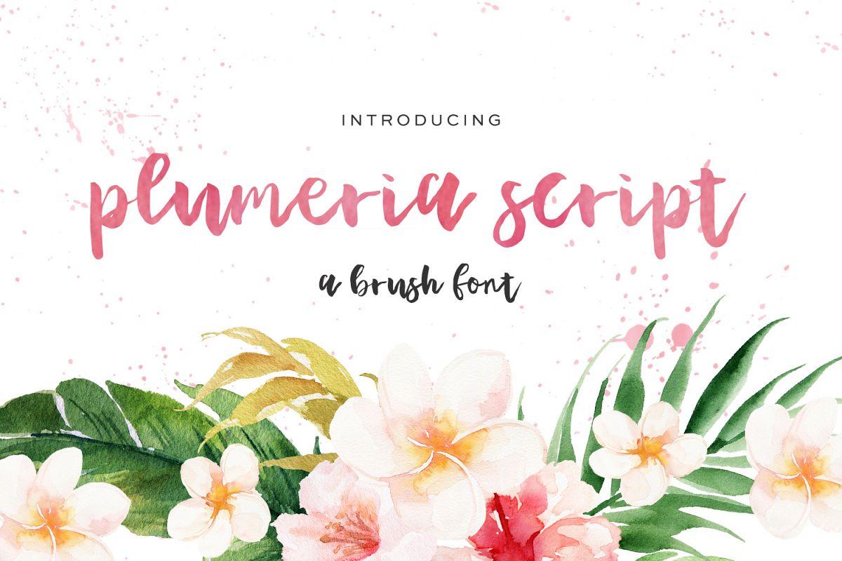 Plumeria Brush Script example image 1