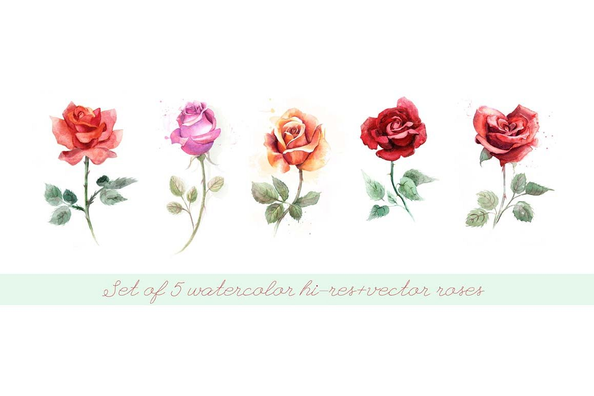 5 watercolor roses example image 1