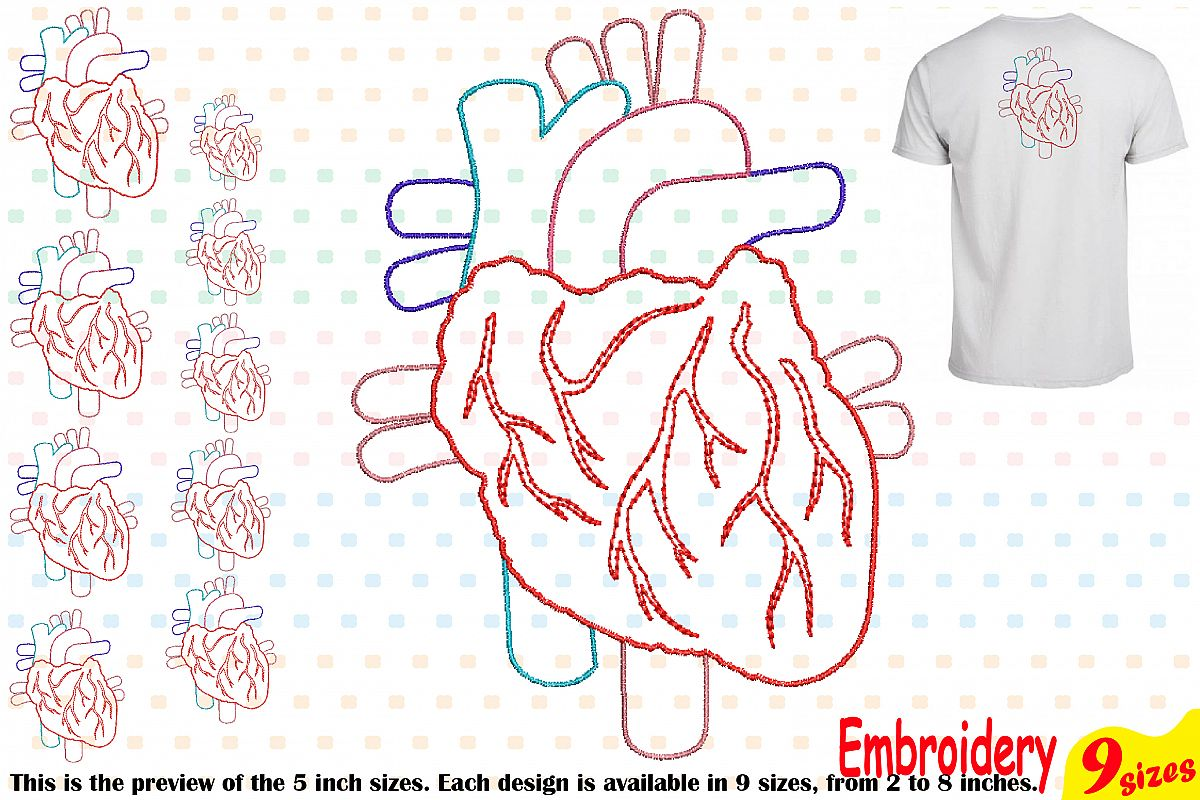 Heart Outline Embroidery Design Machine Instant Download digital file science school hospital biology Medic Organs Anatomy 202b example image 1
