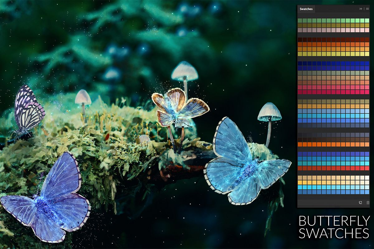 Butterfly Swatches example image 1