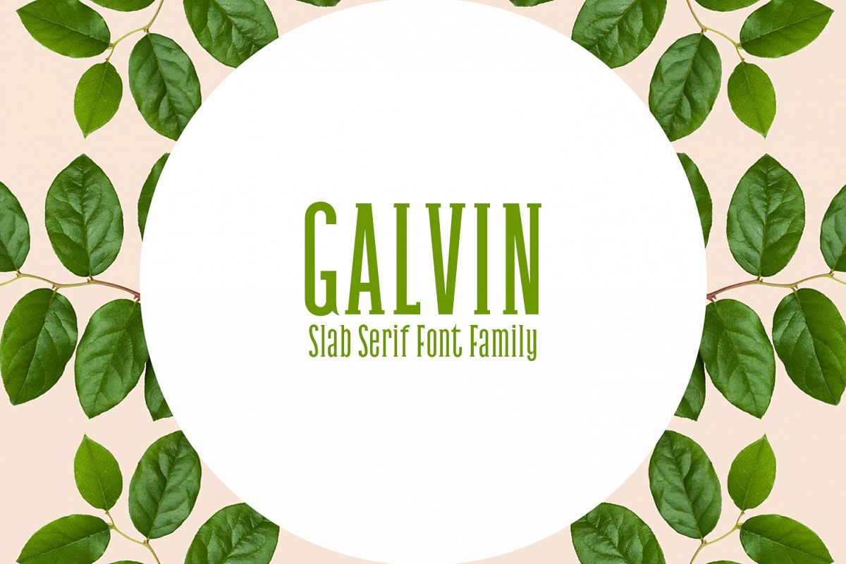 Galvin Slab Serif Font Family Pack example image 1