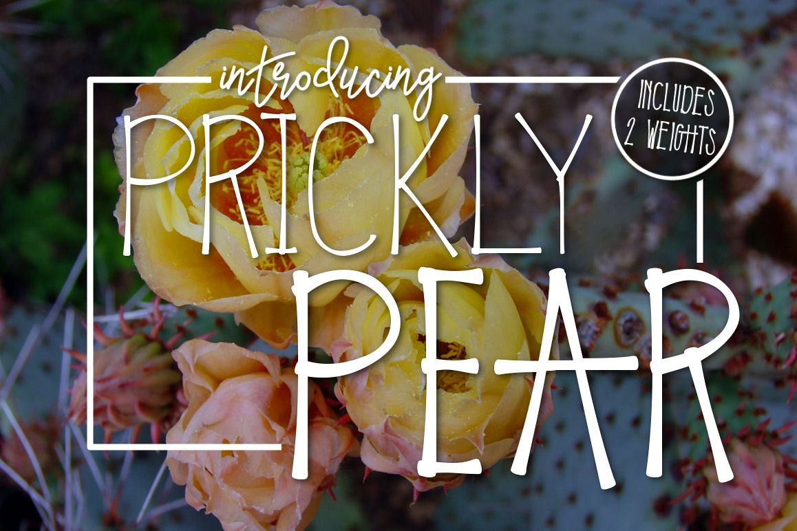 Prickly Pear Typeface example image 1