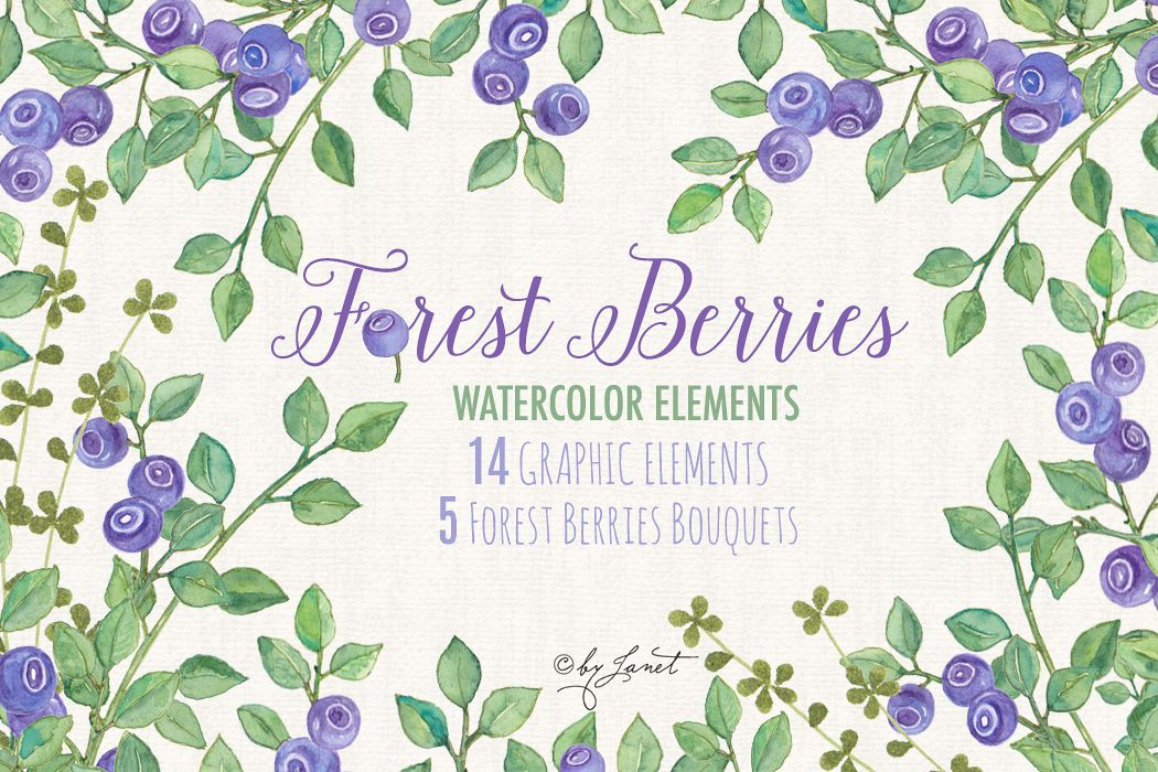 Forest Berries example image 1