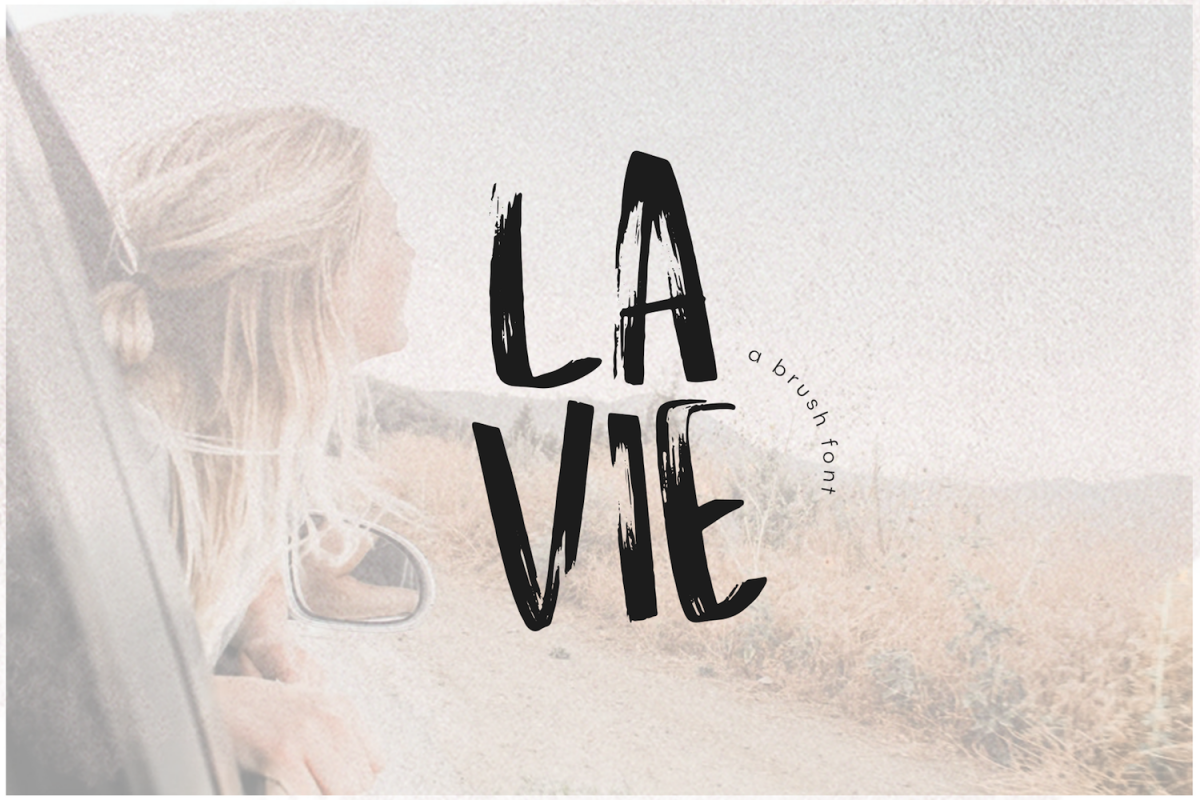 La Vie - A Handwritten Brush Font example image 1