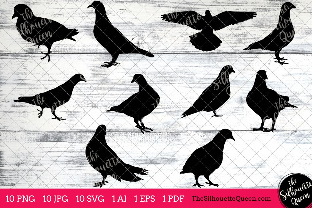 pigeon silhouette clipart clip art ai eps svgs jpgs pngs pdf