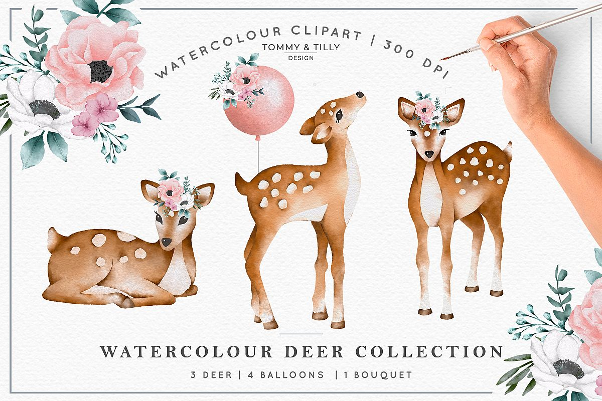 Watercolour Deer Collection - Wedding Baby Flower Clipart PN example image 1