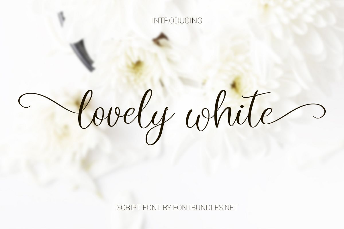 Lovely white. Romantic script font example image 1