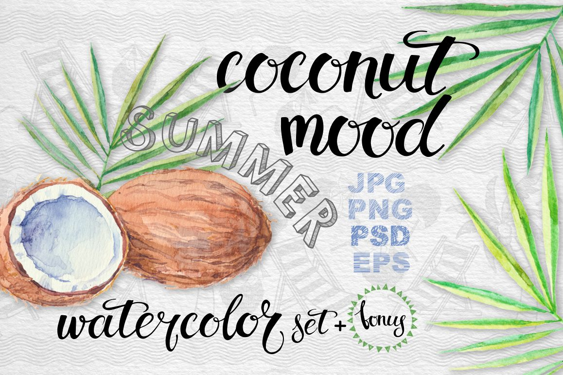 Coconut set example image 1