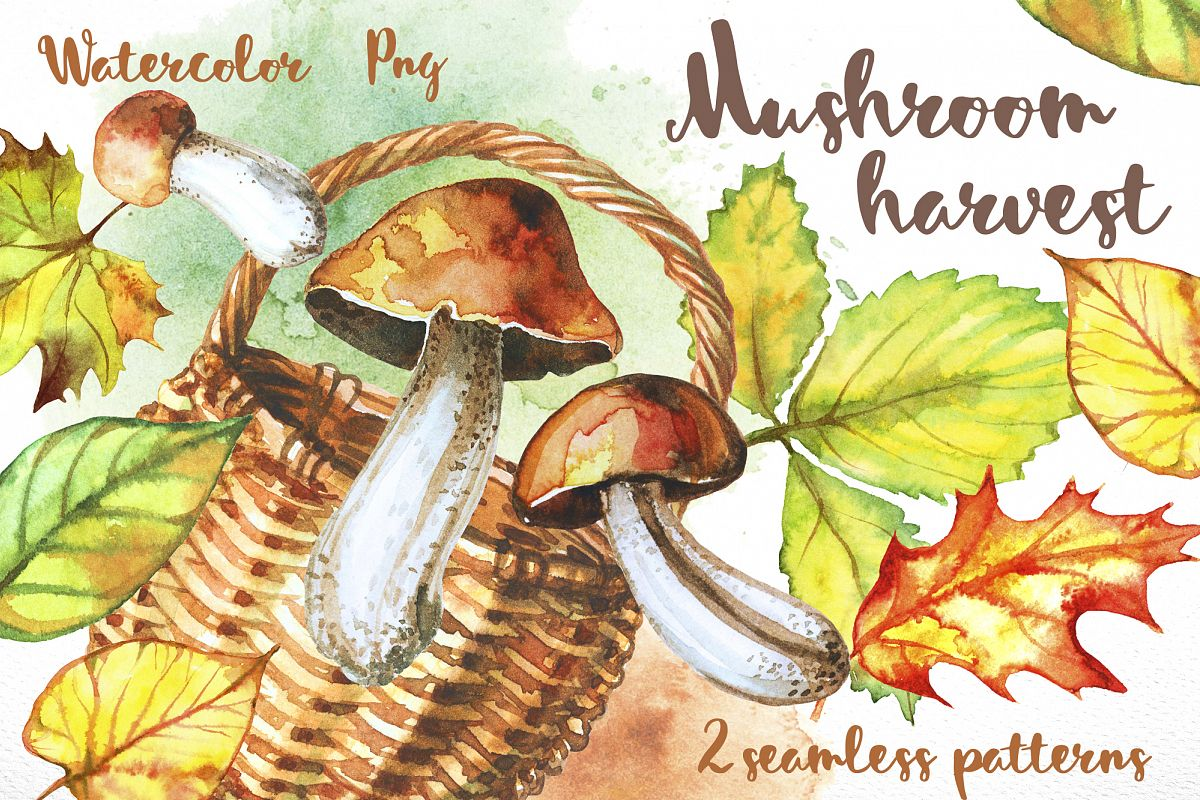 Mushroom harvest. Watercolor. example image 1