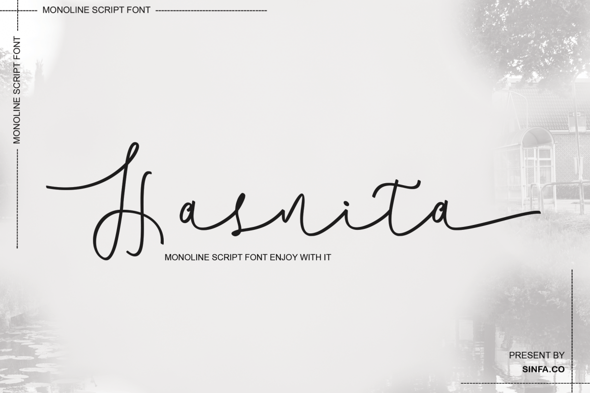 Hasnita example image 1