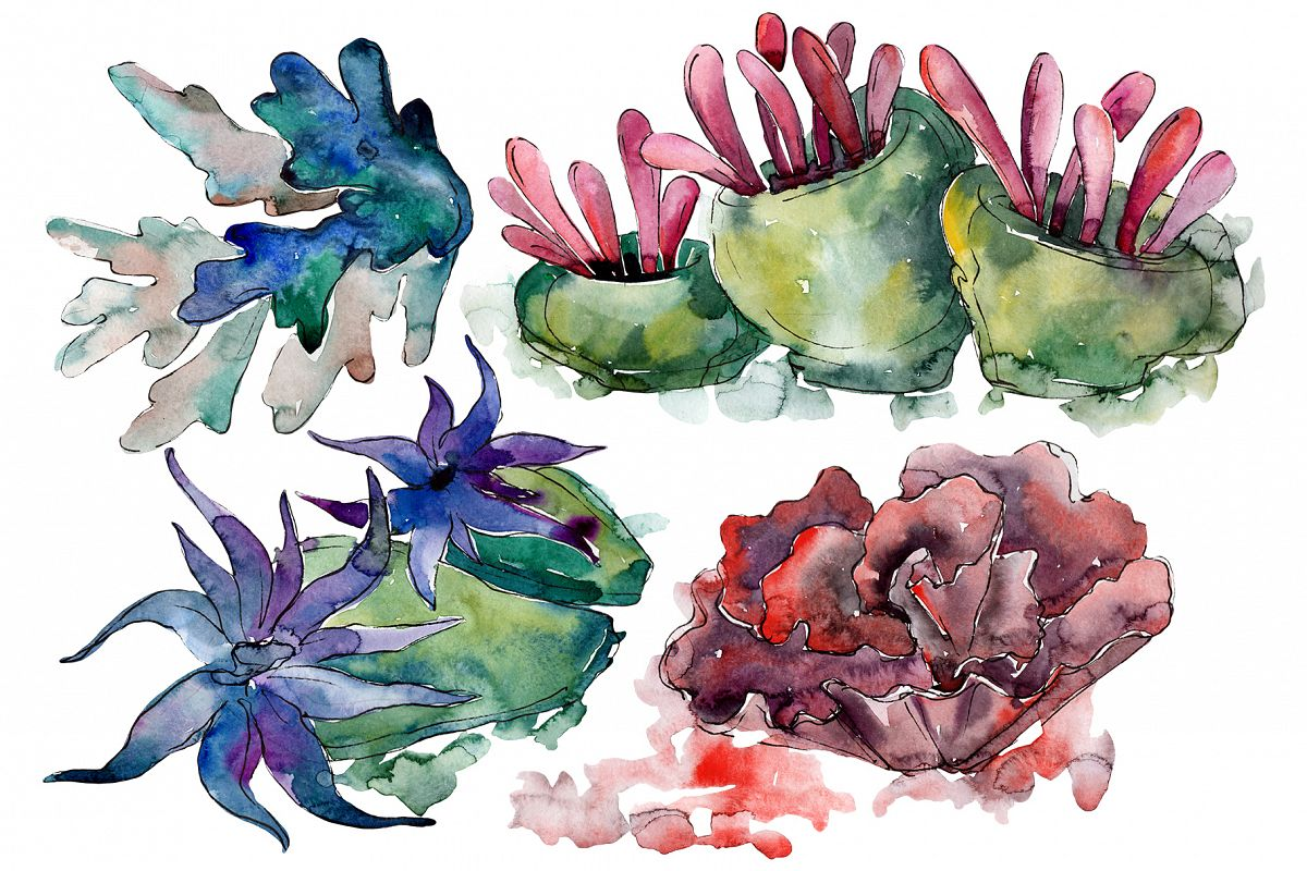 Corals for happiness watercolor png example image 1