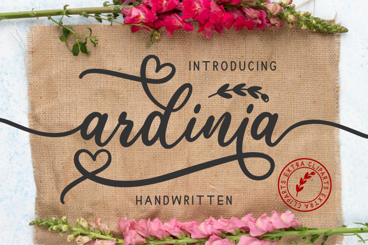 Ardinia example image 1