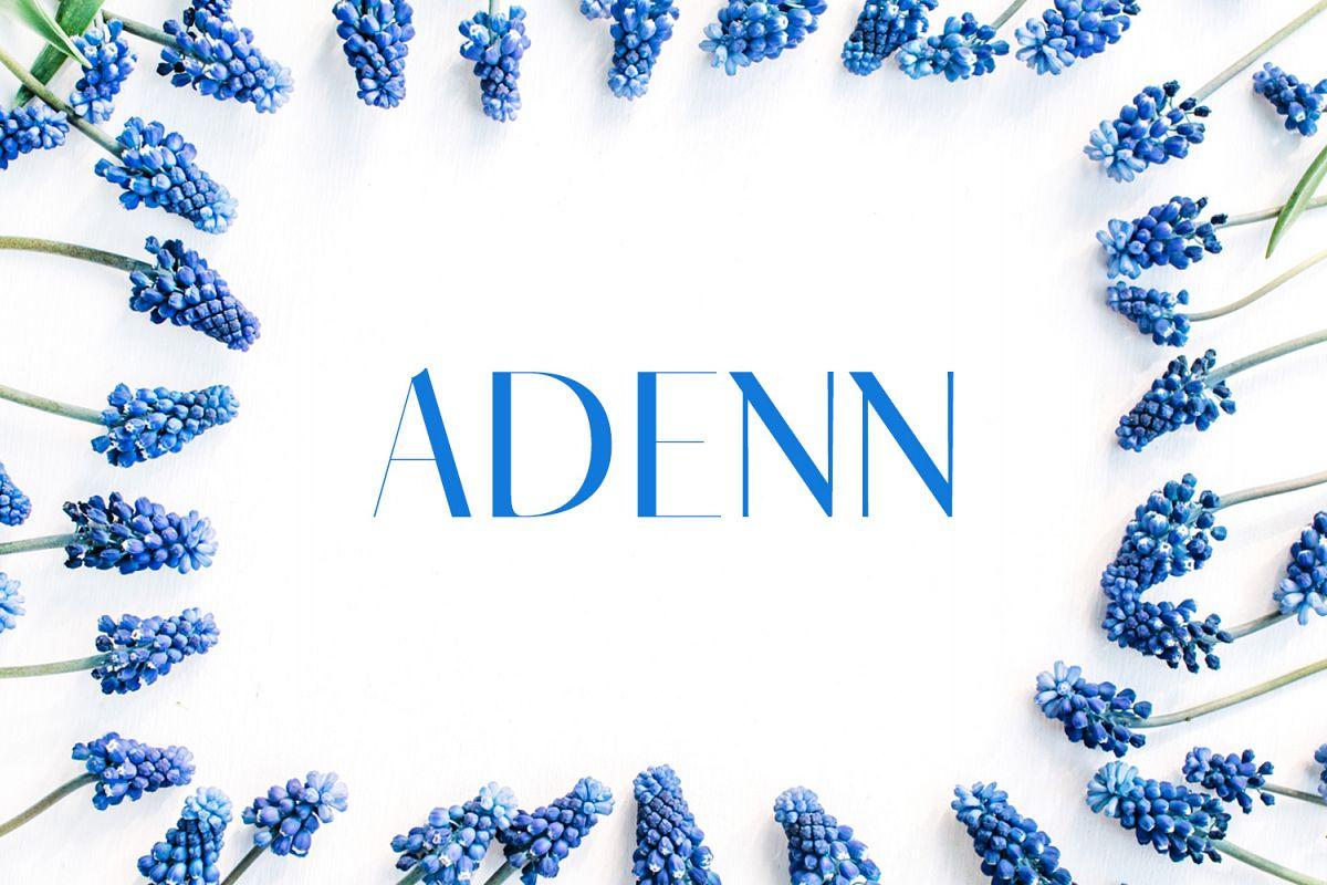 Adenn Sans Serif Typeface example image 1