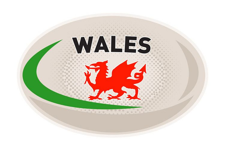 Rugby Ball Wales Welsh dragon example image 1