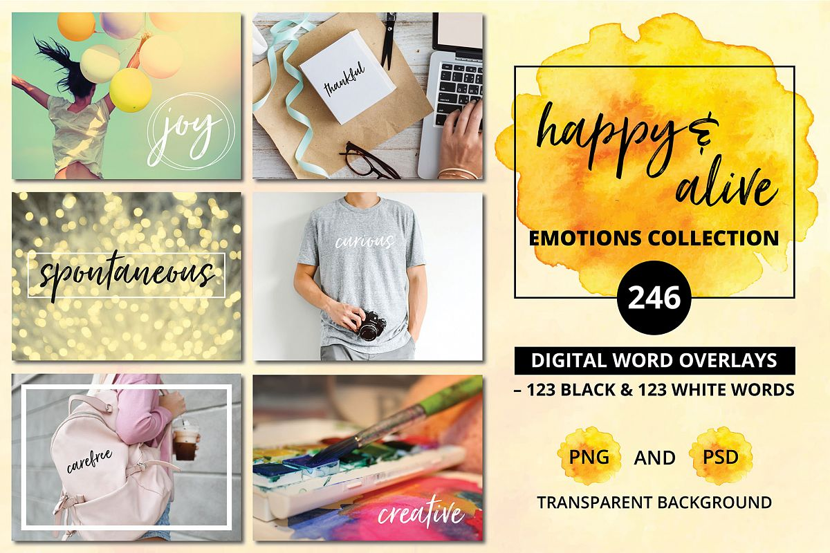 Social Media Overlays - 246 Happy & Alive Emotions Words example image 1