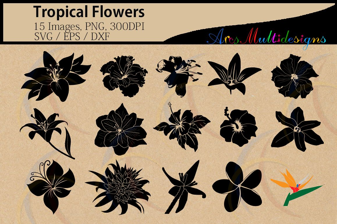 Tropical flowers silhouette svg / HQ / flowers silhouette / vector tropical flowers / all kind of flowers / SVG / PNG / Eps /Dxf / instant example image 1