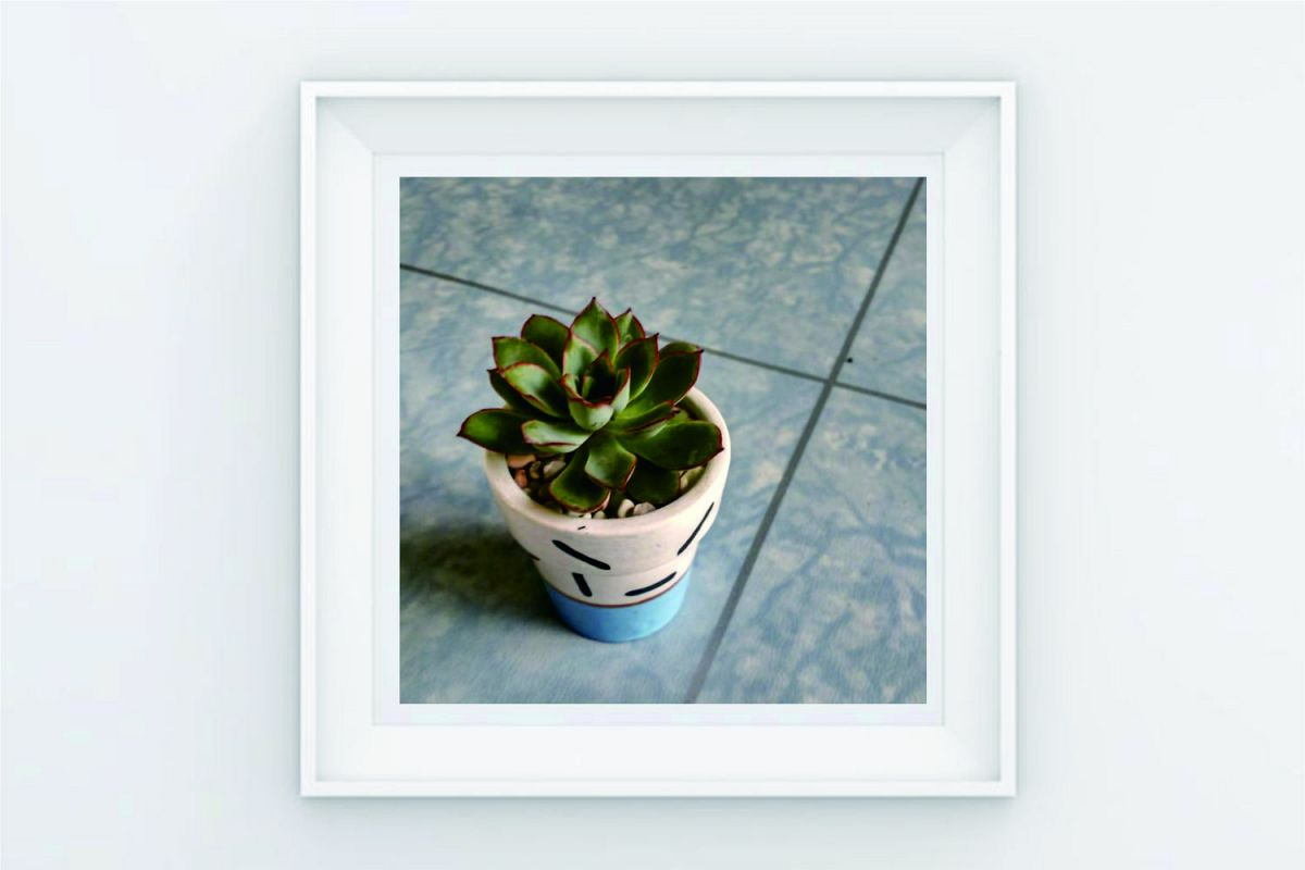 FRAME POSTER SINEL CACTUS example image 1
