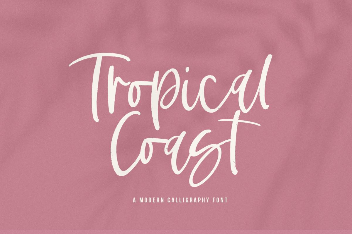 Tropical Coast - A Handwritten Script Font example image 1