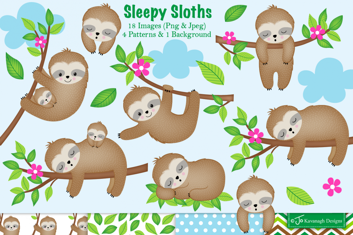 Sloth clipart,Sloth graphics & illustrations,Cute Sloths C28 example image 1