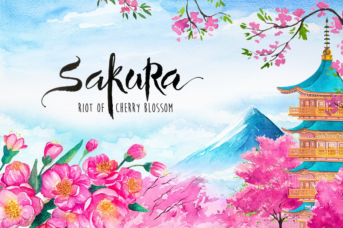Sakura. Riot of Cherry blossom. example image 1