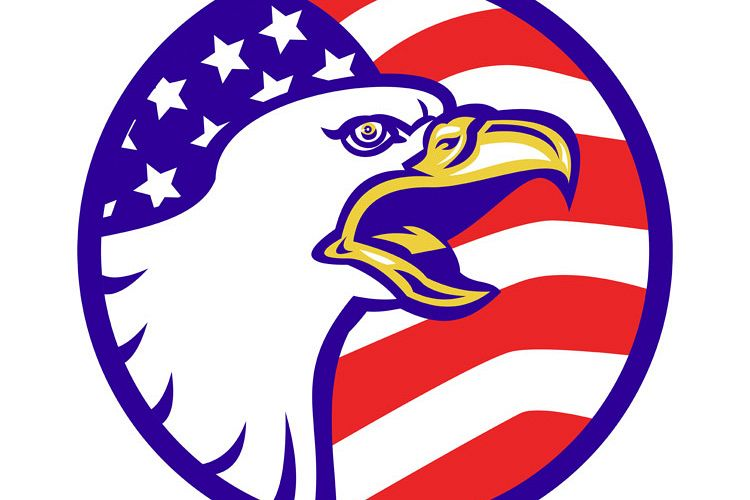 American Bald eagle screaming with USA flag example image 1