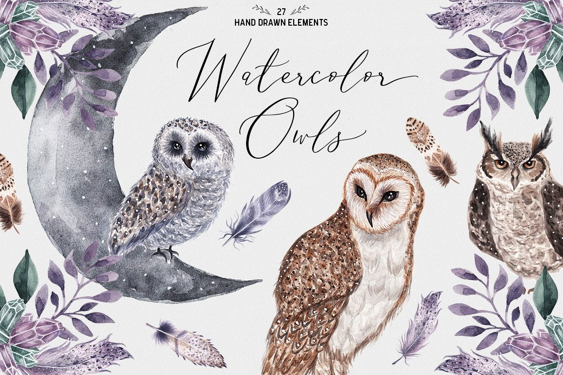 Watercolor Owls example image 1