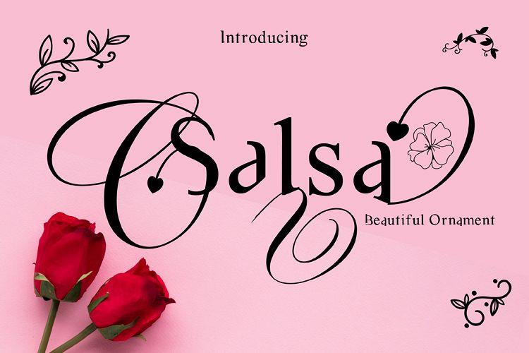 Salsa example image 1