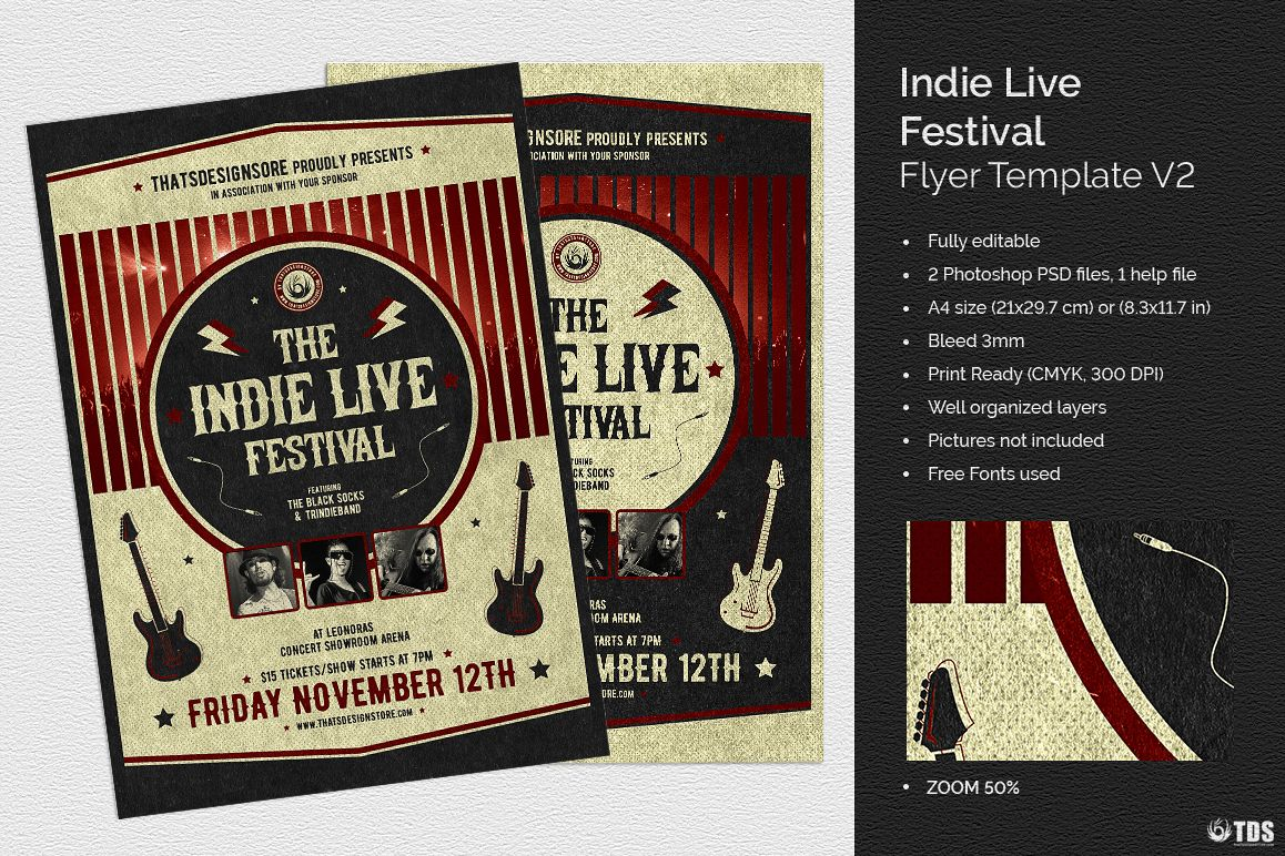 Indie Live Festival Flyer Template V2 example image 1