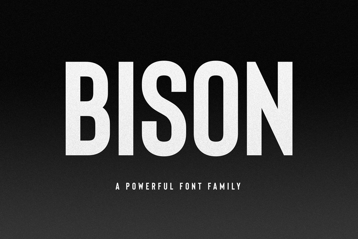 Bison - A powerful font example image 1