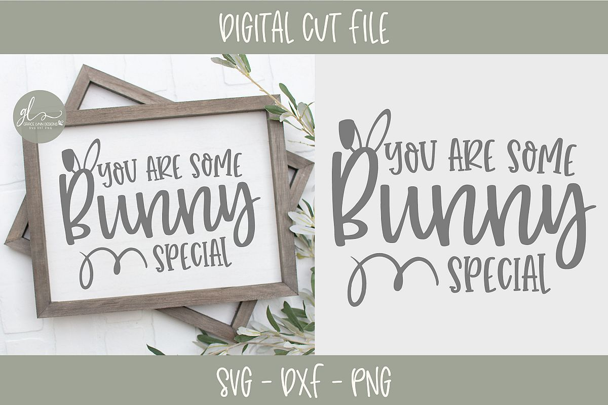 You Are Some Bunny Special - Easter SVG Cut File example image 1