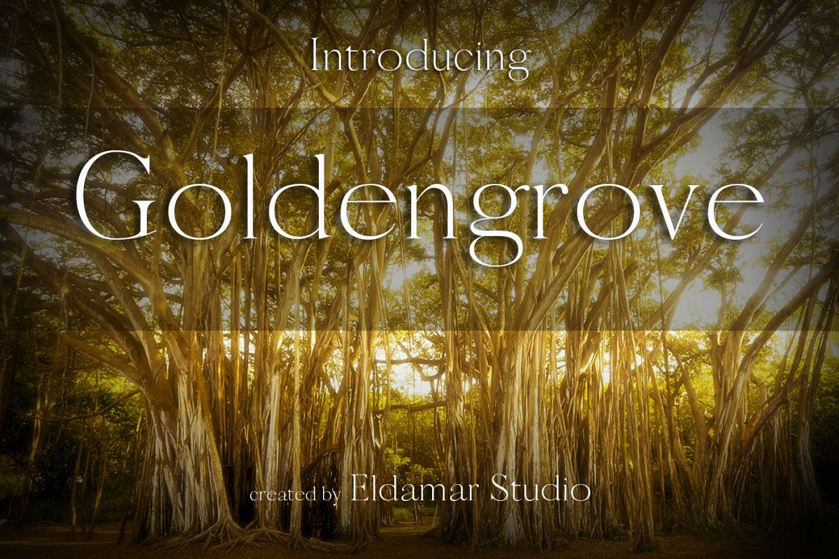 Goldengrove Font example image 1