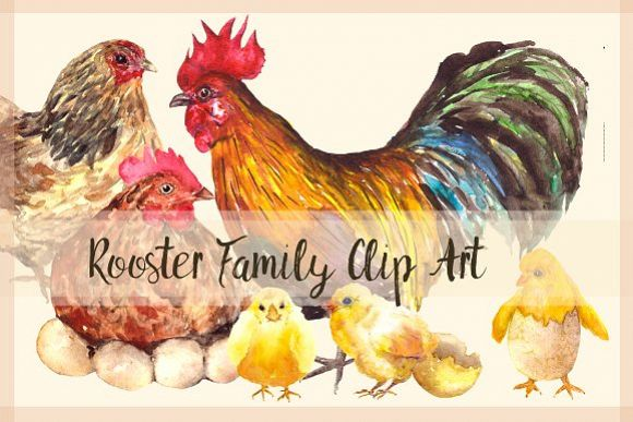 Rooster Family - Watercolor Clip Art example image 1
