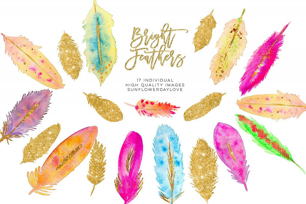 Watercolor Feathers clipart Download example image 1