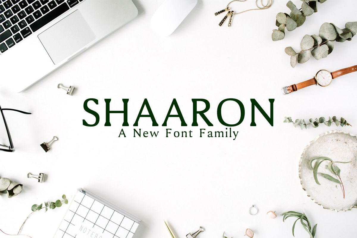 Shaaron A New Serif Font Family example image 1