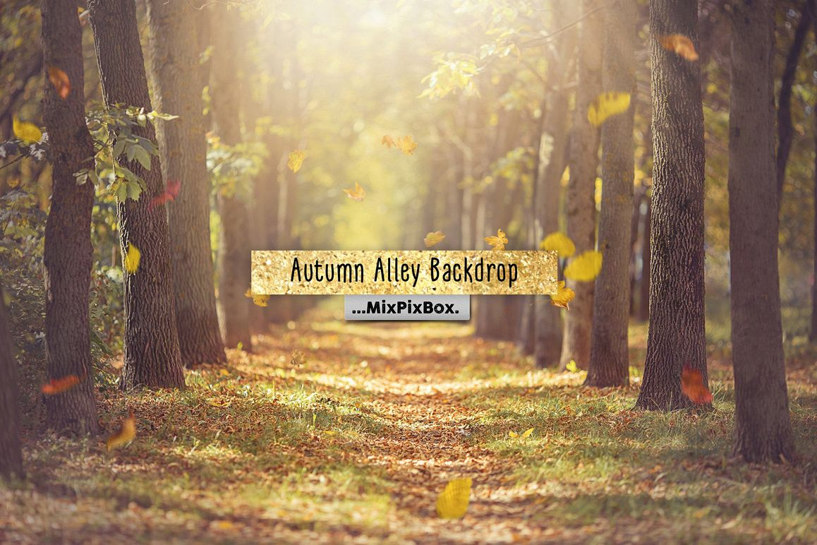 Autumn Alley Backdrop example image 1