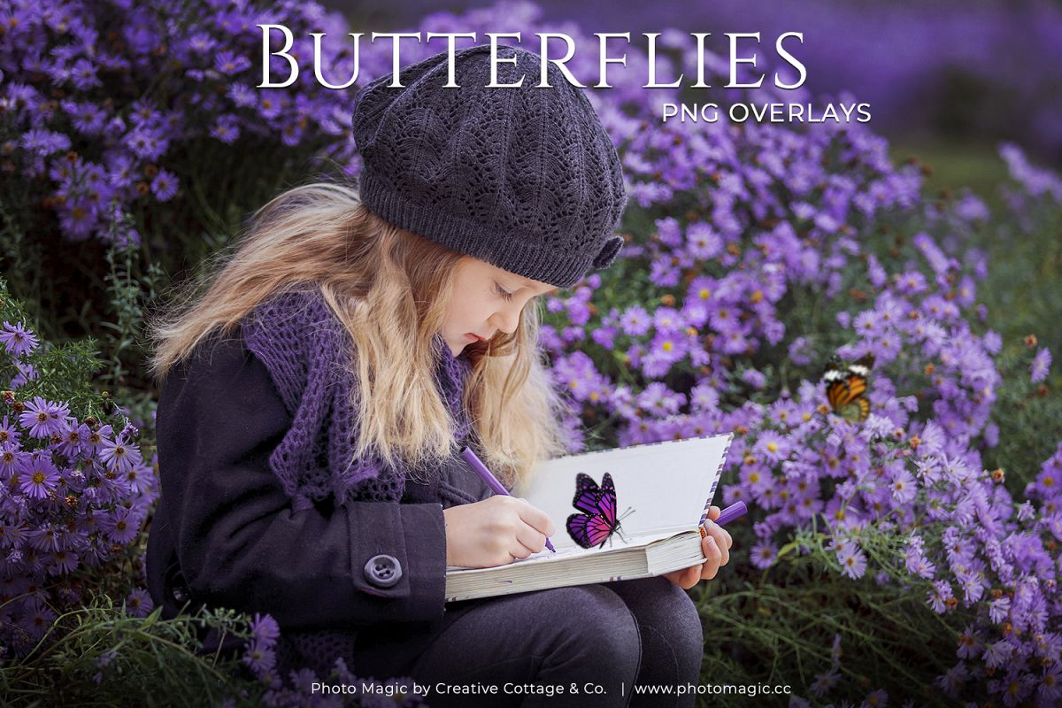 Fantasy Butterflies Photo Overlays example image 1