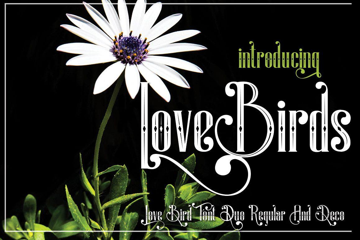 LoveBirds example image 1