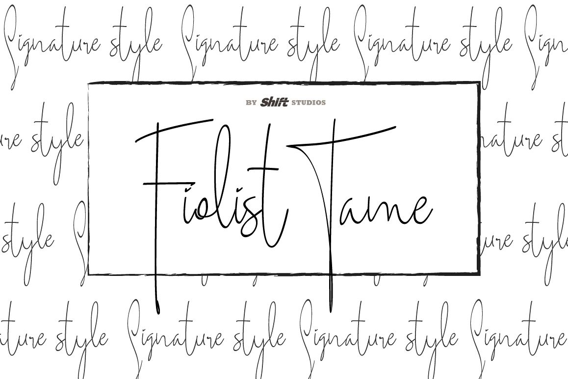 Fiolist Tame Typeface example image 1