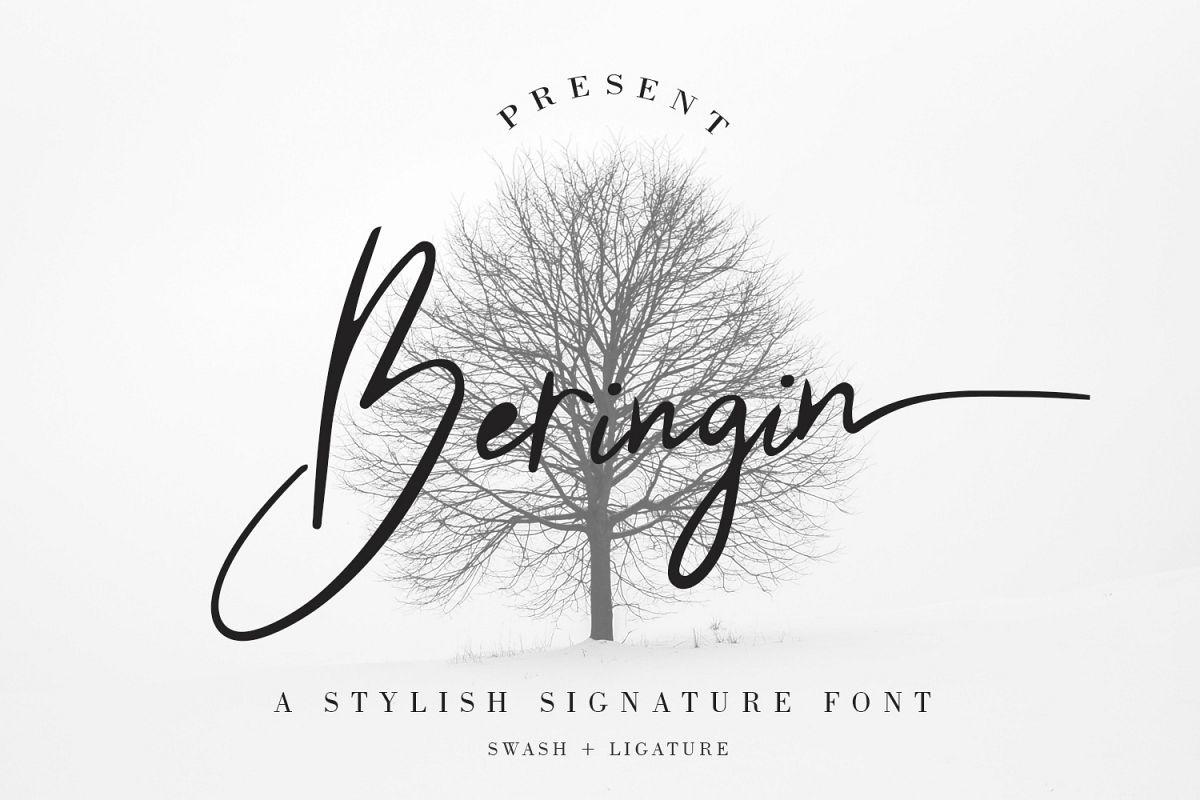 Beringin Stylish Signature Font example image 1