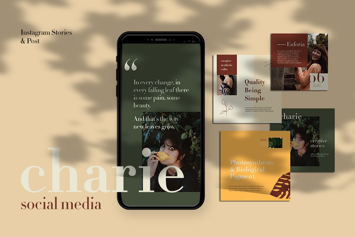 Charies Instagram Templates example image 1