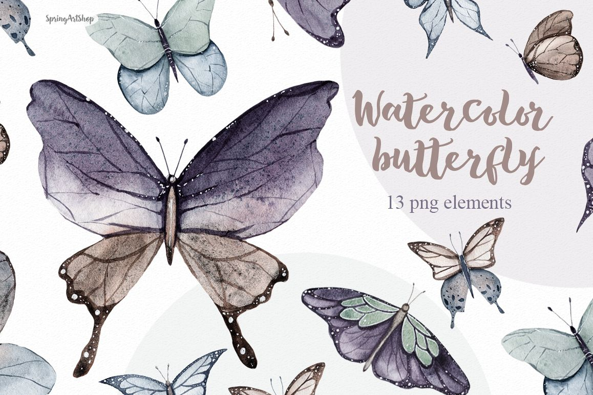 Butterfly watercolor. Spring clipart illustration